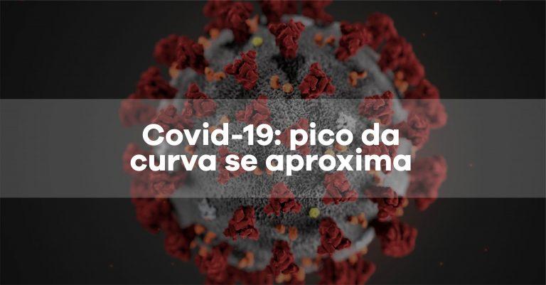 Artigo: A Covid-19 e o pico da curva